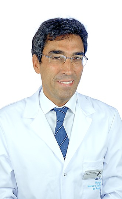 Julián Pérez-Villacastín Domínguez